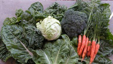 U.S. Organic Sales